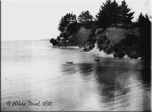 A photograph of Blockhouse Bay